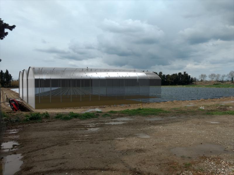 Serres agriculture 3D